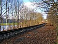 Severn Valley Railway line near Trimpley Reservoir - geograph.org.uk - 1579103.jpg