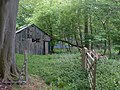 Shack in the woods - geograph.org.uk - 169668.jpg