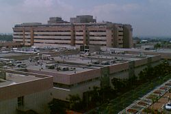Sheba Medical Center, Main Hospitalization Tower.JPG