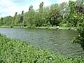 Sherwood Forest Farm Park Fishery - geograph.org.uk - 18487.jpg