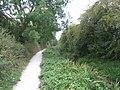 Shrewsbury Canal - geograph.org.uk - 1504810.jpg