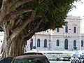 Siracusa Italy - Creative Commons by Gnuckx - panoramio (4).jpg