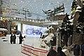 Ski dubai-2011.JPG