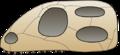 Skull diapsida.png