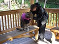 Sled Dog Discovery & Musher's Camp 31.jpg