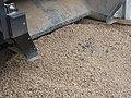 Sludge pellitizer eThekwini SA (28842191535).jpg