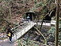 Small cave at route 4 of Mt. Takao - panoramio.jpg