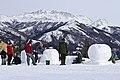Snowsculpture (6836611090).jpg