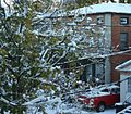 Snowstorm New Jersey October 2011 Number 7.jpg