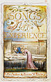 Songs of Innocence and of Experience, copy Y, 1825 (Metropolitan Museum of Art) 29 100 Experience Title.jpg