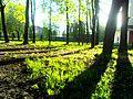 Sovetskiy rayon, Bryansk, Bryanskaya oblast', Russia - panoramio (1).jpg