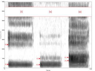 Formant Spectrum of phonetic resonance in speech production, or its peak