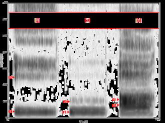Vowel - Image: Spectrogram iua