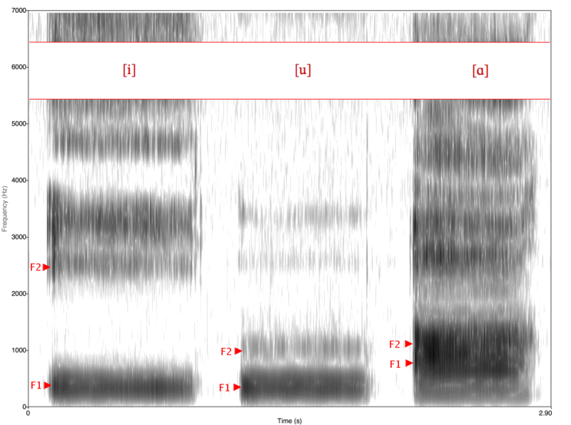 File:Spectrogram -iua-.png
