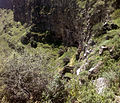 St Nshan in Horomayr Bottom of canion 02.jpg