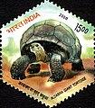 Stamp of India - 2008 - Colnect 157977 - Aldabra Giant Tortoise Aldabrachelys gigantea.jpeg