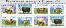 Тибетский бык