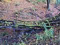 Starý dřevěný most v lese.JPG