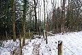 Stile as footpath enters Beech Wood - geograph.org.uk - 1151415.jpg