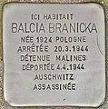 Stolperstein für Balcia Branicka (Forst).jpg