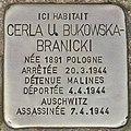 Stolperstein für Cerla U. Bukowska-Branicki (Forst).jpg