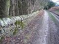Stone Wall at Gwysaney - geograph.org.uk - 313250.jpg