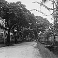 Straat in Saint-Laurent-du-Maronie in Frans- Guyana, Bestanddeelnr 252-6641.jpg