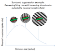 Surround suppression curve.png