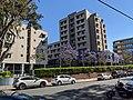 Sydney University Village NOV2019.jpg