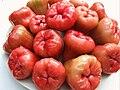 Syzygium samarangense jambu cincalo.jpg