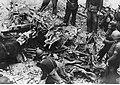 Szczątki angielskiego samolotu zestrzelonego nad Trypolisem (2-2057).jpg