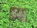 Třebotovský židovský hřbitov, náhrobek v podobě knihy.jpg