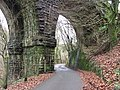 Taff Trail passing under Quaker's Yard viaduct - geograph.org.uk - 3295097.jpg