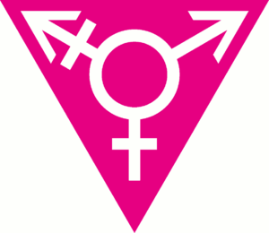 English: A purple transgender ♀+♂=⚧ symbol sur...