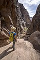 Taking in the view of Goldstrike Canyon (6936704c-dcc6-4d90-9c2b-fdd8cea3f90e).jpg