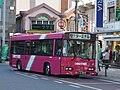 Taros bus.JPG