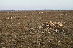 Tas de galets de la Deuxième Guerre Mondiale dans la Crau (Matthieu Gauvain).jpg