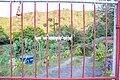 Terreiro do Capivari--Casa de Obaluayê e Oxumarê 0614.jpg