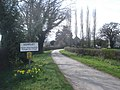 The Daffodil Way at Kempley - geograph.org.uk - 769325.jpg