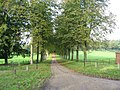 The Driveway To Sparham Hall - geograph.org.uk - 274697.jpg