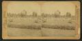 The Globe at Washington Park, Chicago, by Underwood & Underwood 2.png
