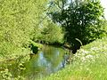The River Idle head towards Bellmoor Lake - panoramio.jpg
