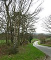 The Road to Highgate Common - geograph.org.uk - 366848.jpg