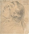The Upturned Head of a Young Boy in Profile MET DP808121.jpg