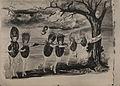 The old nut tree (HS85-10-38557).jpg