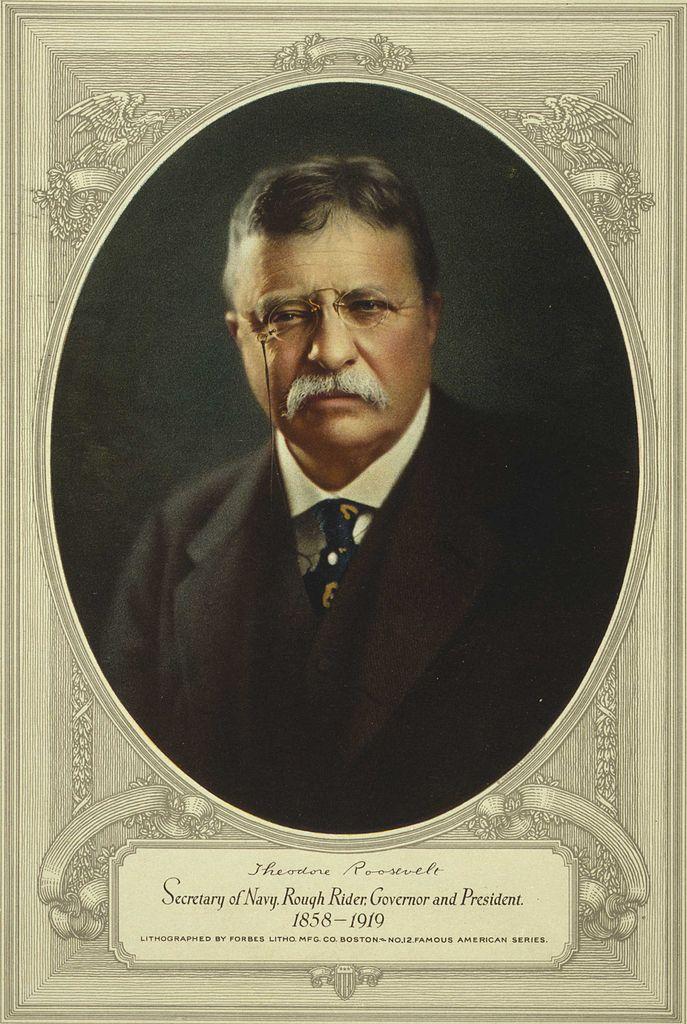 presidency of theodore roosevelt essay