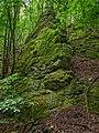 Tiefenstürmig Felsen-20200607-RM-160228.jpg