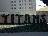 Titans ivy topiary.jpg