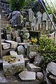 Tono Kizugawa Kyoto pref Japan27s3.jpg