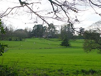 Torry Hill - Torry Hill parkland with the main house in the distance